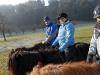 2006_12_28_ausritt_faxihof-133_bearb